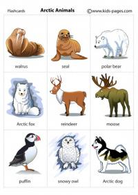 Arctic animals crafts for kids - photo#23